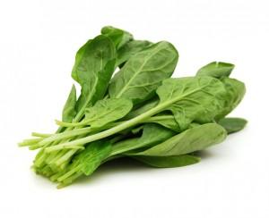 Hrana bogata zeljezom 2