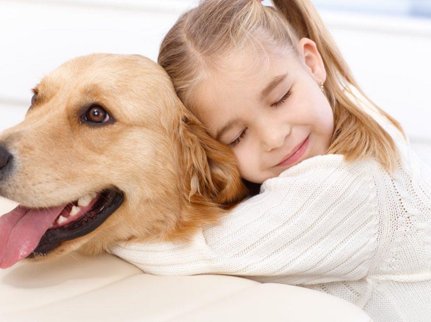 Kućni ljubimac – klupko ljubavi koje svatko treba