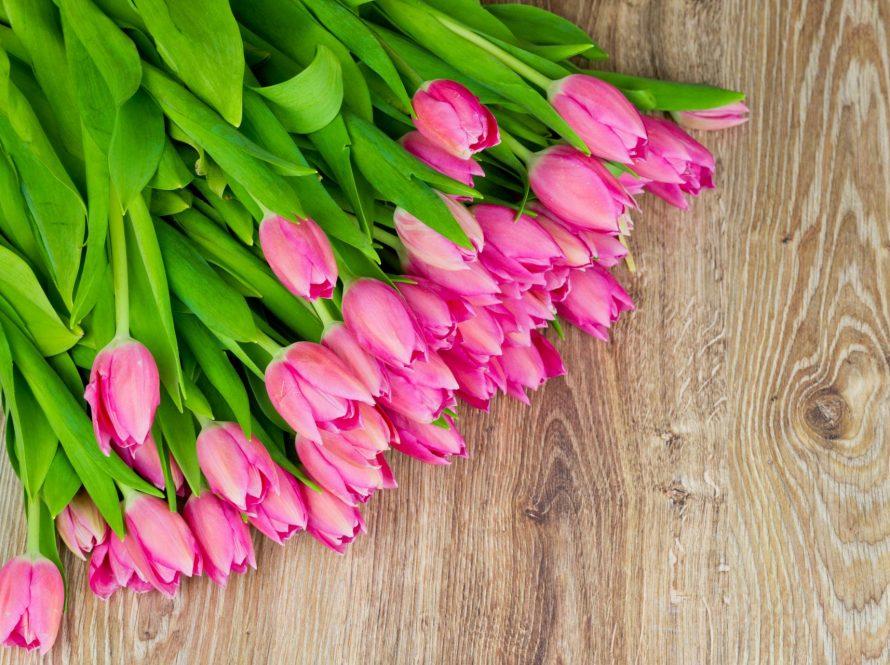 Kako da vam cvijeće potraje što duže