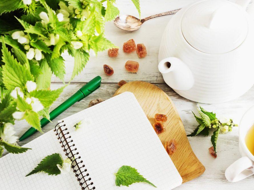 Kopriva – proljetni lijek
