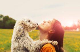 Kako nam životinje mogu promijeniti život?