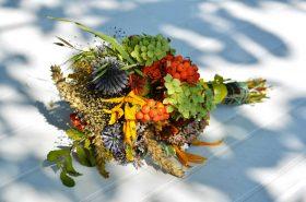 Koje biljke mogu ublažiti simptome menopauze