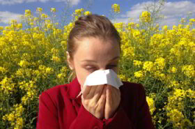 Alergije na pelud