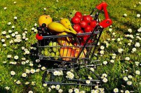 Kupnja i čuvanje hrane ljeti
